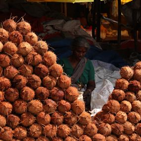 The Coconut seller by Amitabh Mukherjee - City,  Street & Park  Markets & Shops ( shop, coconut, street, india, decorated, seller )