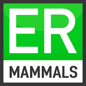Easy Recorder British Mammals