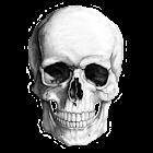 MorbidMeter icon