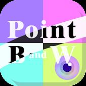 Point Black and White (Sepia)