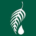 Melaleuca icon