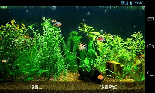 Fish Tank HD Live Wallpaper screenshot
