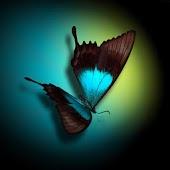Butterfly Theme HD
