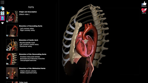 Anatomy Learning - 3D Atlas Screenshot