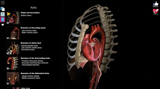 Anatomy Learning - 3D Atlas- screenshot thumbnail