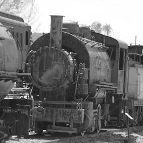 by Ruben Guerrero - Transportation Trains
