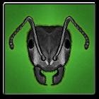 Ants ?! icon