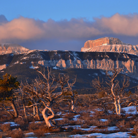 Blackleaf morning by Don Evjen - Landscapes Mountains & Hills ( clouds, pines, mountains, cliffs, montana, snow, sunrise, rugged )
