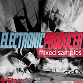 GST-FLPH Electronic-Producer-1