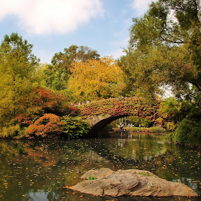 Autumn by Katsuhiro Kaneko - City,  Street & Park  City Parks ( water, the pond, fall foliage, manhattan, nyc, gapstow bridge, new york, central park, ny, autumn, fall, trees, new york city,  )