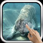 Underwater Tiger icon