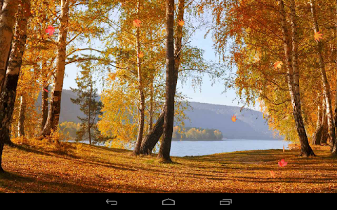 Autumn Wallpaper screenshot 16