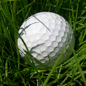 Speed Golf Lite icon