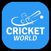 Live Cricket Scores & Updates