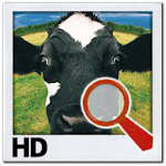 Find it HD - Find Difference 7.6 Apk