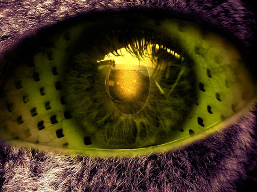 eyes HD for whatsapp