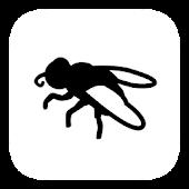 Keiner Fliege