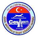 Ceylan Surucu Kursu logo