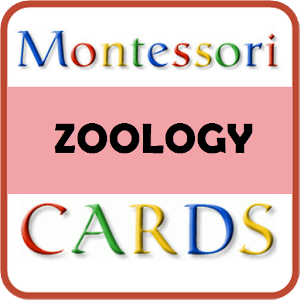 Montessori Zoology Cards.apk 1.3