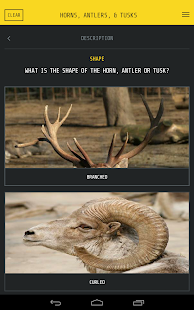 Wildlife Alert- screenshot thumbnail