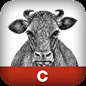C in a Nutshell logo