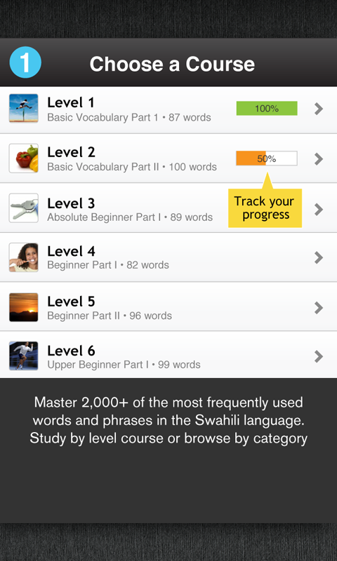 Learn Swahili Free WordPower - screenshot