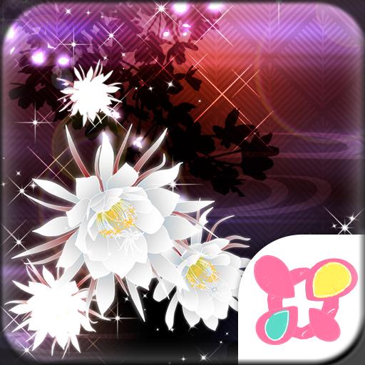 Beautiful Theme Moonlit Beauty Icon