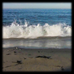 Angry Ocean Live Wallpaper HD