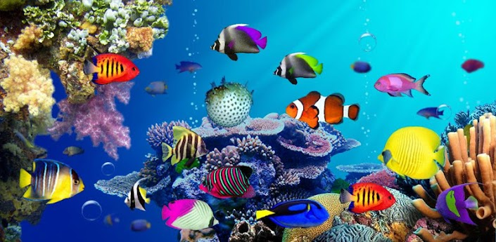 Under water live wallpaper - Android Forums at ...
