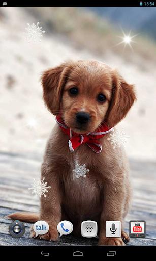 Puppies Winter Snow LWP