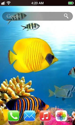 4D海底世界動態壁紙