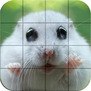Puzzle – Cute Hamsters for PC and MAC