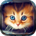 Cute Cats Live Wallpaper icon