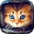 Cute Cats Live Wallpaper file APK for Gaming PC/PS3/PS4 Smart TV