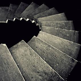 snail by Lina Marano - Abstract Patterns (  )