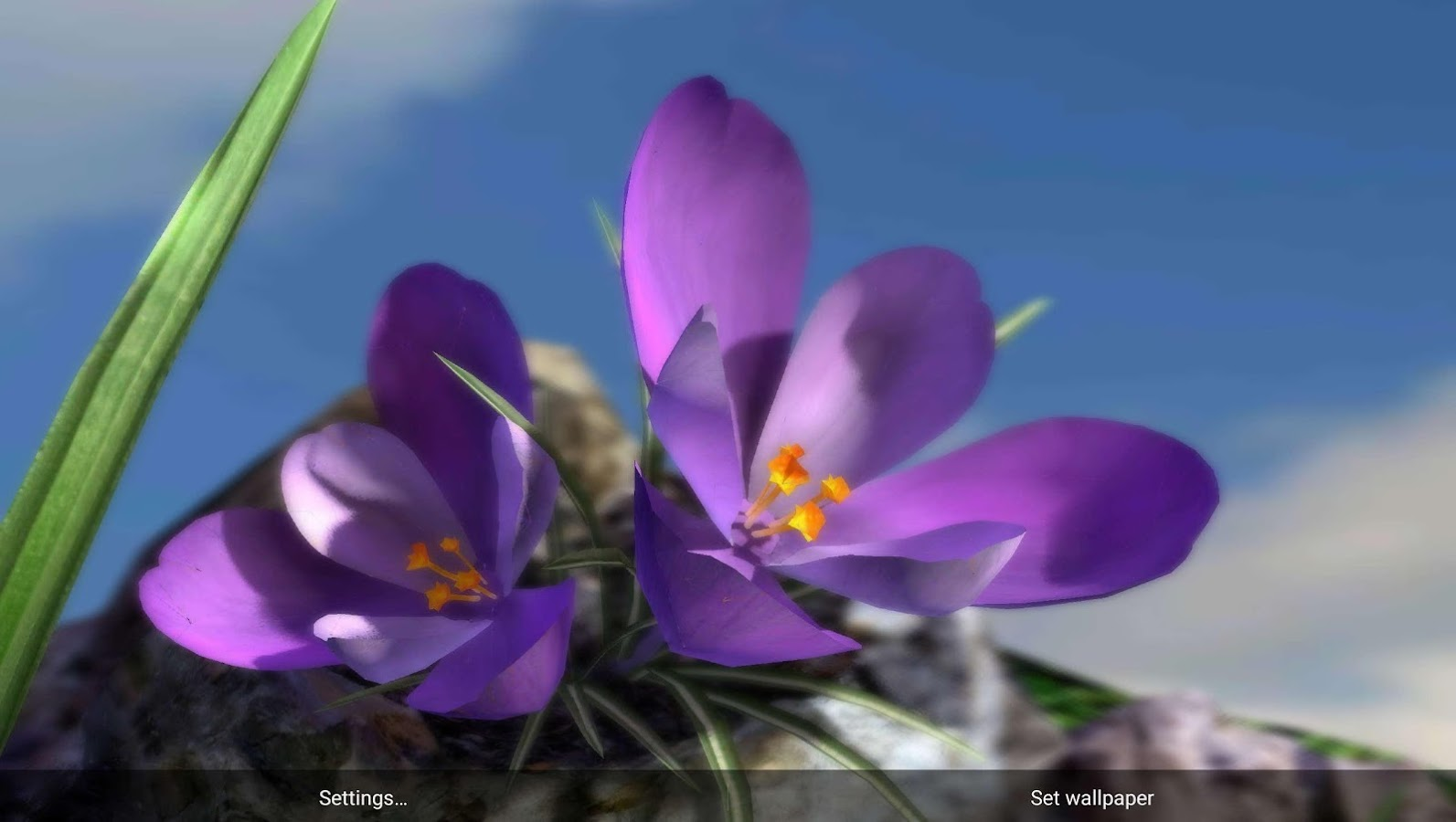 nature live spring flowers 3d android apps on google play