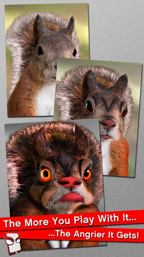 Angry Squirrel Free