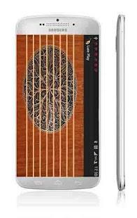 琵琶播放|玩音樂App免費|玩APPs