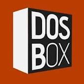 DosBox Professional