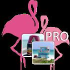 Florida Memory Game PRO icon