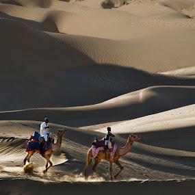 Desert riders by Anna Tatti - People Street & Candids ( india rajasthan,  )