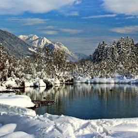 Zimska idila na Zelencih... by Jani Matko - Landscapes Mountains & Hills