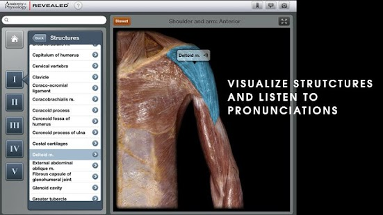 Anatomy & Physiology REVEALED- screenshot thumbnail