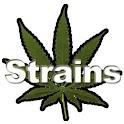 Strains FREE logo