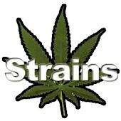 Strains FREE