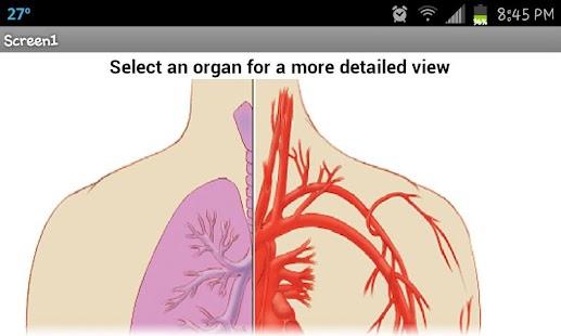 Organ Painter - screenshot thumbnail