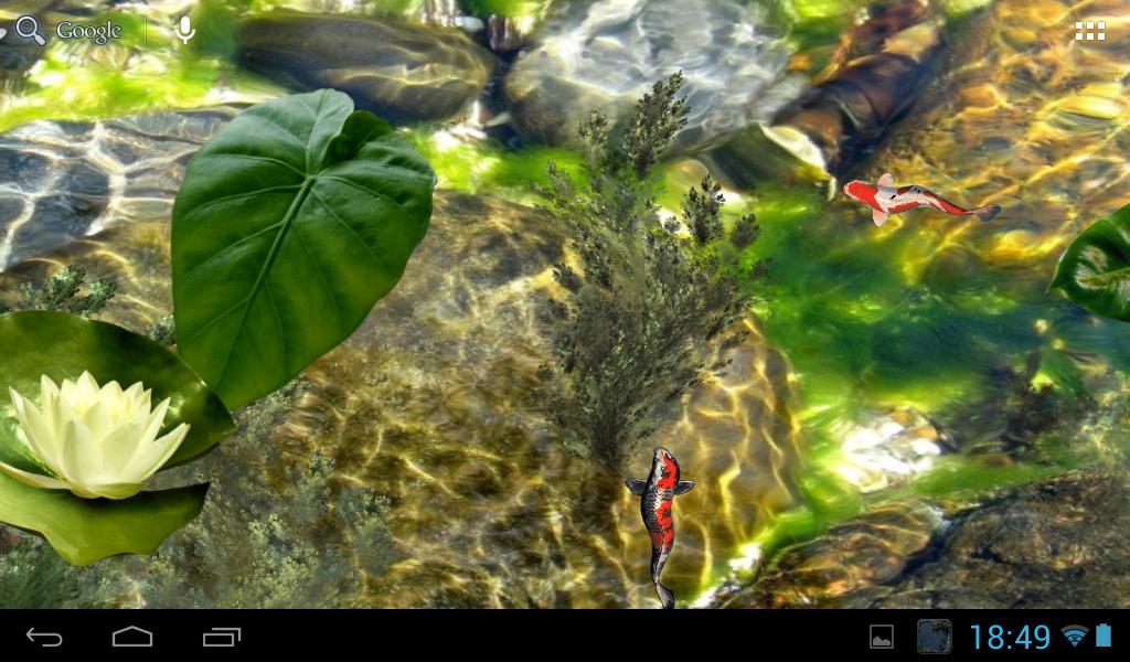 Koi pond android apps on google play for Koi pond algae