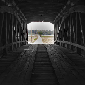 Inside-Out by Steve Hall - Buildings & Architecture Bridges & Suspended Structures ( indiana, parke county, covered bridge, scenic )