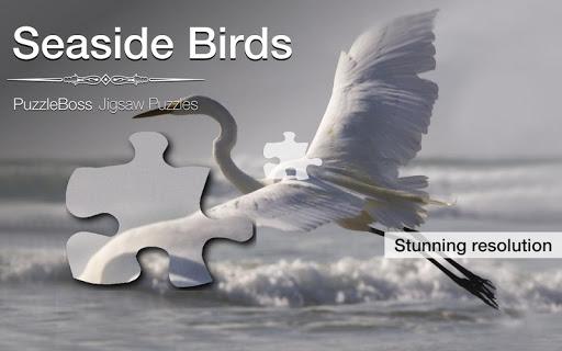 Seaside Bird Jigsaws Demo