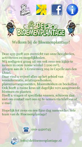 Bloemenplantage